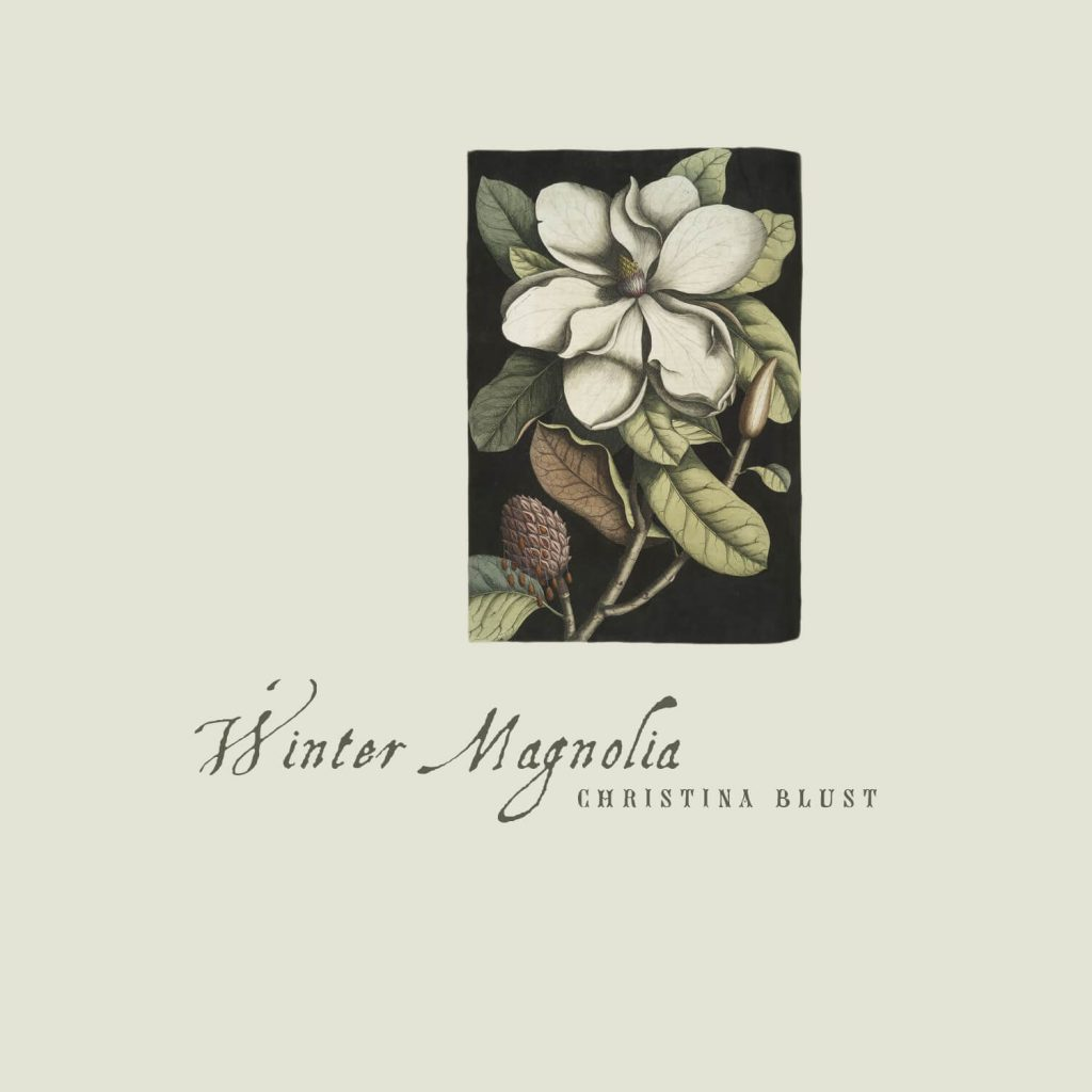 Winter Magnolia Album Art